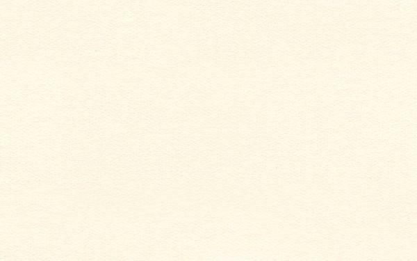 "Crescent Mat Board - Archival Photo Mount Board 4 ply - Antique White (32"" X 40"")"